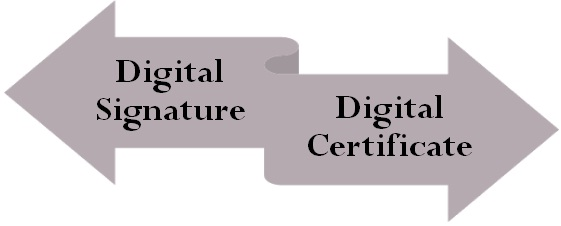 Bidding digital certificates